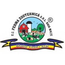 Zootehnica